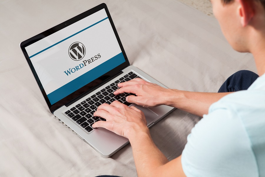 An Internet Marketing Agency For Car Dealerships Can Set Up Your Website With WordPress